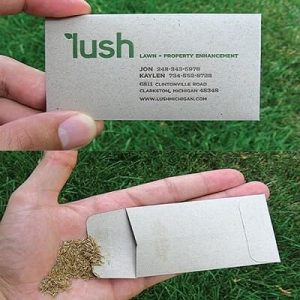 lush-business-card